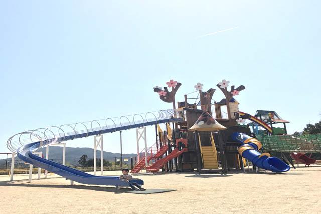 【龍王山総合公園】子供と一緒におでかけ☆おすすめ情報
