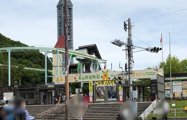【東山動物園】コアラ赤ちゃん愛称は『りん』☆授乳室や駐車場情報も