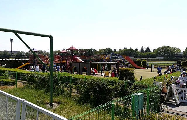 【東京競馬場】子供の遊び場スポットに最適♪授乳・グルメ情報も