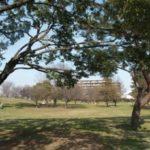 【広島平和記念資料館】小学生以下でも楽しめる?子連れで平和公園