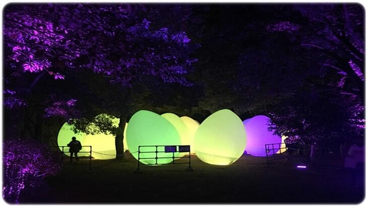 2019年広島☆広島城光の祭☆当日券の半額になる割引方法とは?