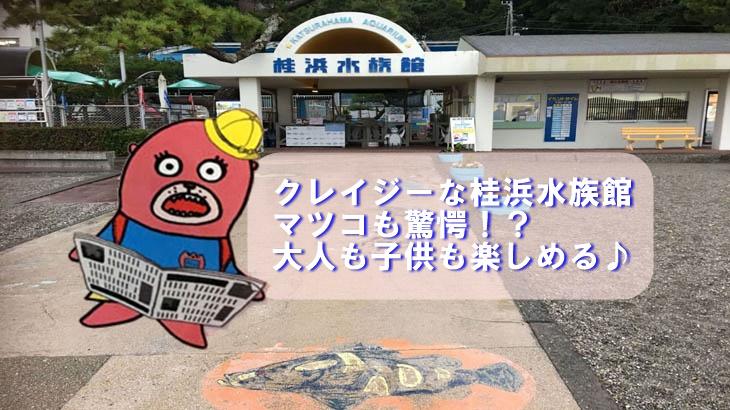 クレイジーな桂浜水族館☆マツコも驚愕!?大人も子供も楽しめる!!